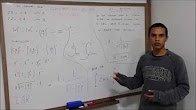 Depoimento de Aluno: Curso de Matemática